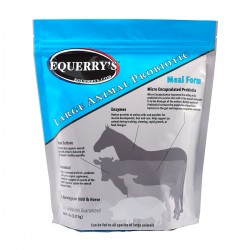 Equerry's™ Large Animal...